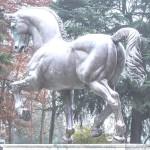 cavallo-di-leonardo